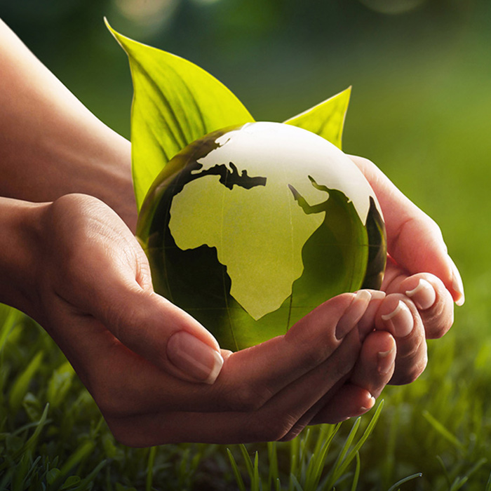 Globe in hands image